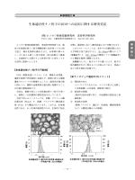 生体適合性ナノ粒子のDDSへの応用に関する研究受託