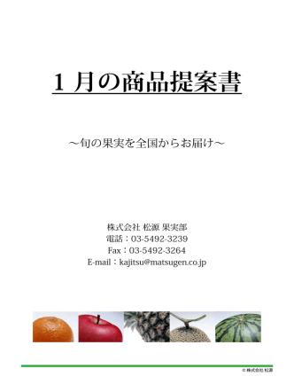 1 月の商品提案書